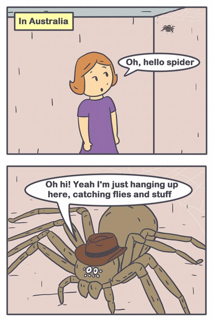 Nicholalala Spider